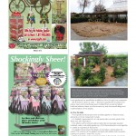 LGR Magazine ~ Farm At Table (feature article) p.2
