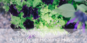 3 Cures to Fix What's Ailing Your Healing Outdoor Haven ~ Part 1 with Tip Sheet!