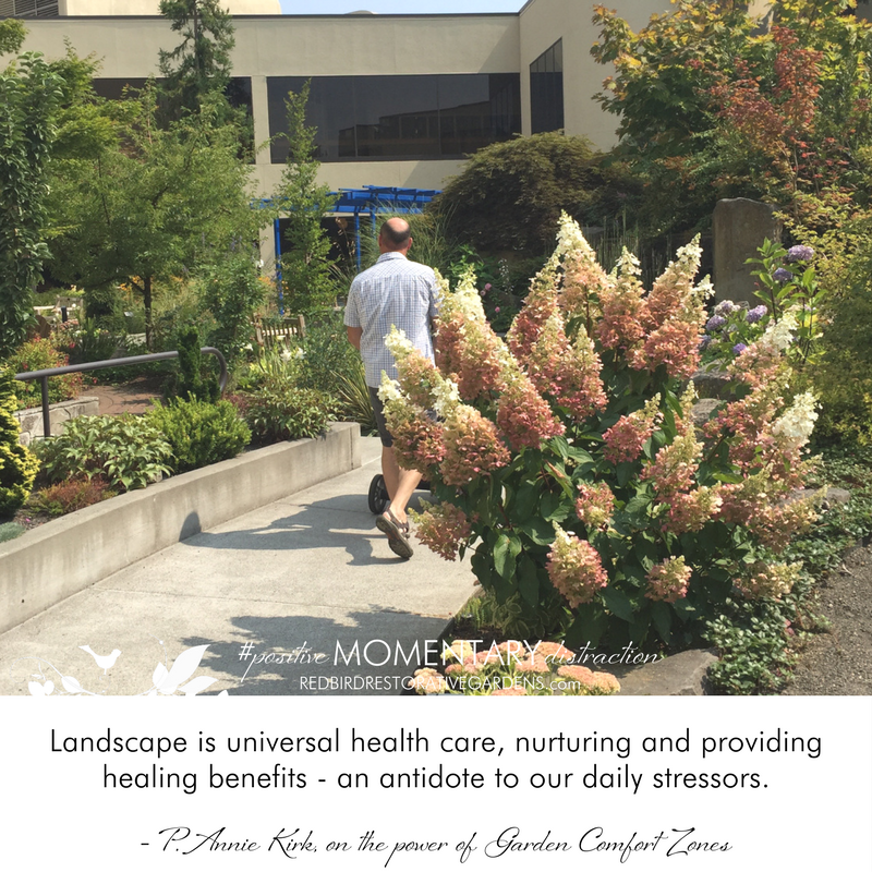 Landscape is universal health care, nurturing and providing healing benefits - an antidote to our daily stressors. - P. Annie Kirk, on the power of Garden Comfort Zones