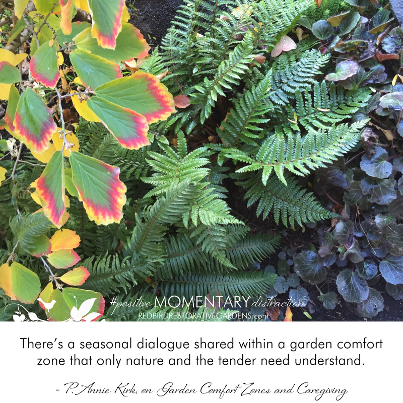 There's a seasonal dialogue shared within a garden comfort zone that only nature and the tender need understand. - P. Annie Kirk, on Garden Comfort Zones and Caregiving