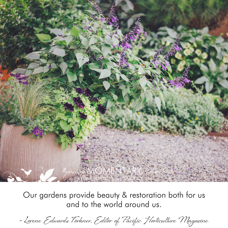 Our gardens provide beauty & restoration both for us and to the world around us. - Lorene Edwards Forkner, Editor of Pacific Horticulture Magazine