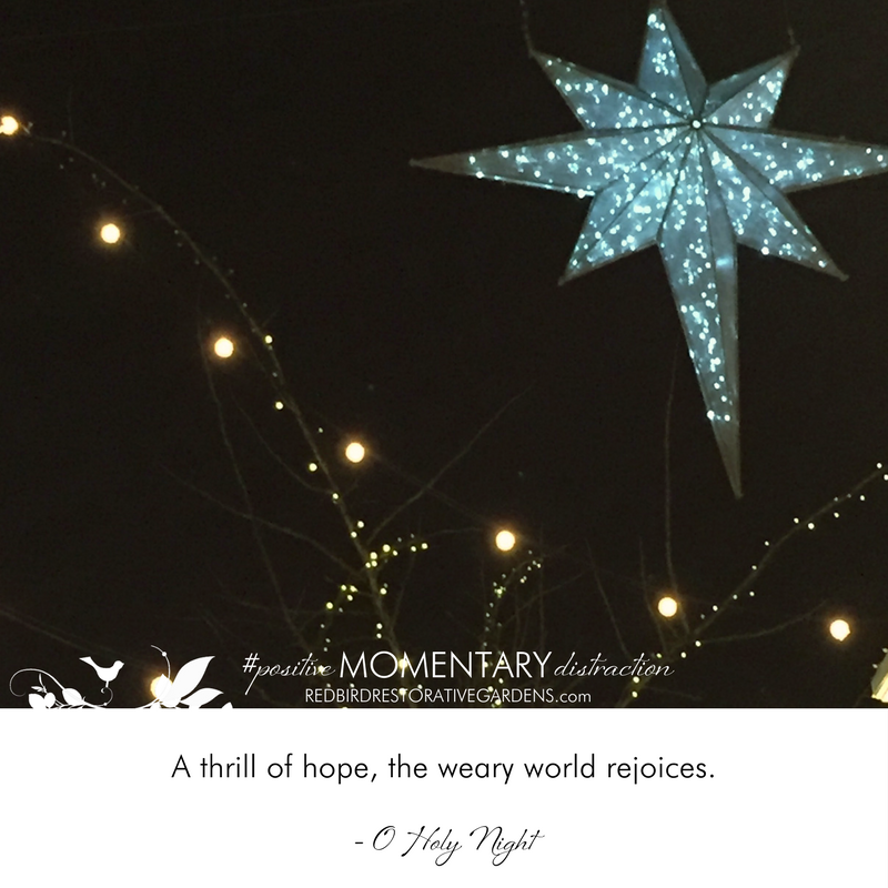 A Positive Momentart Distraction for December 25th, 2017 - A thrill of hope, the weary world rejoices. - O Holy Night